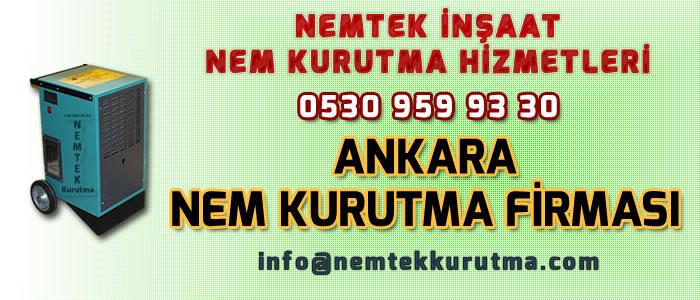 Ankara Nem Kurutma Firması