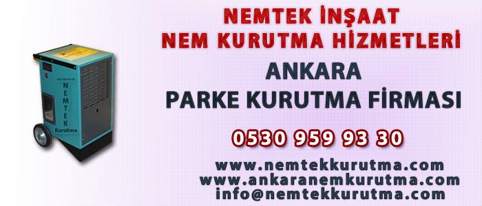 Ankara Parke Kurutma Firması